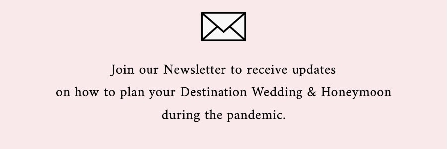 Email Newsletter for Adriana Weddings